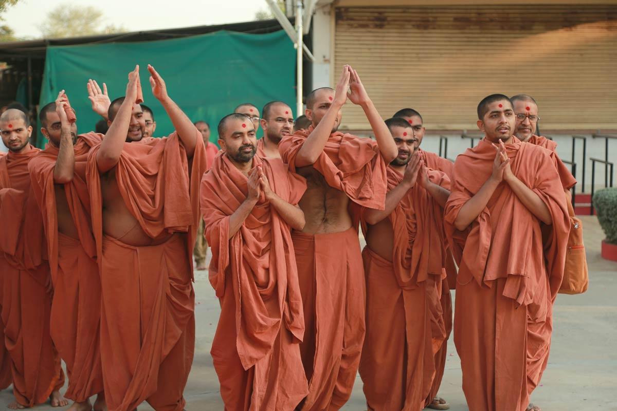 Hire Escort in Gandhinagar