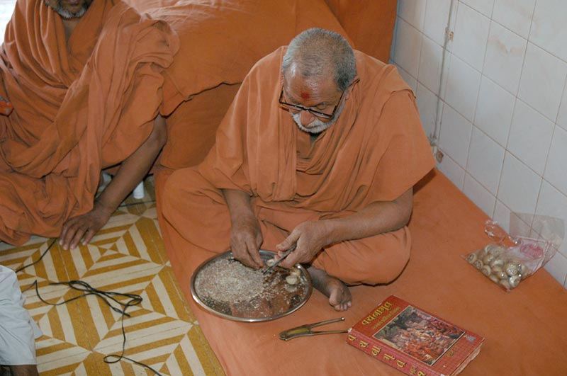 P.Anandswami Jivan Darshan
