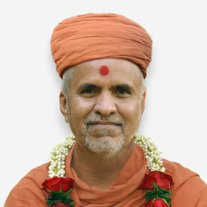 HDH Swamishri